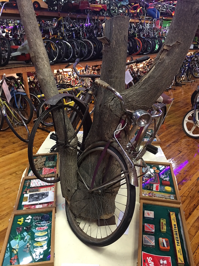 The only place in the world to see bikes wrapped in trees.