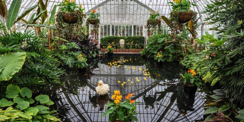 Enchantment Awaits At Phipps Spring Flower Show
