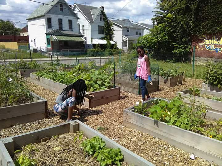 Why The Ura Is Encouraging Urban Agriculture With Its New Farm A Lot