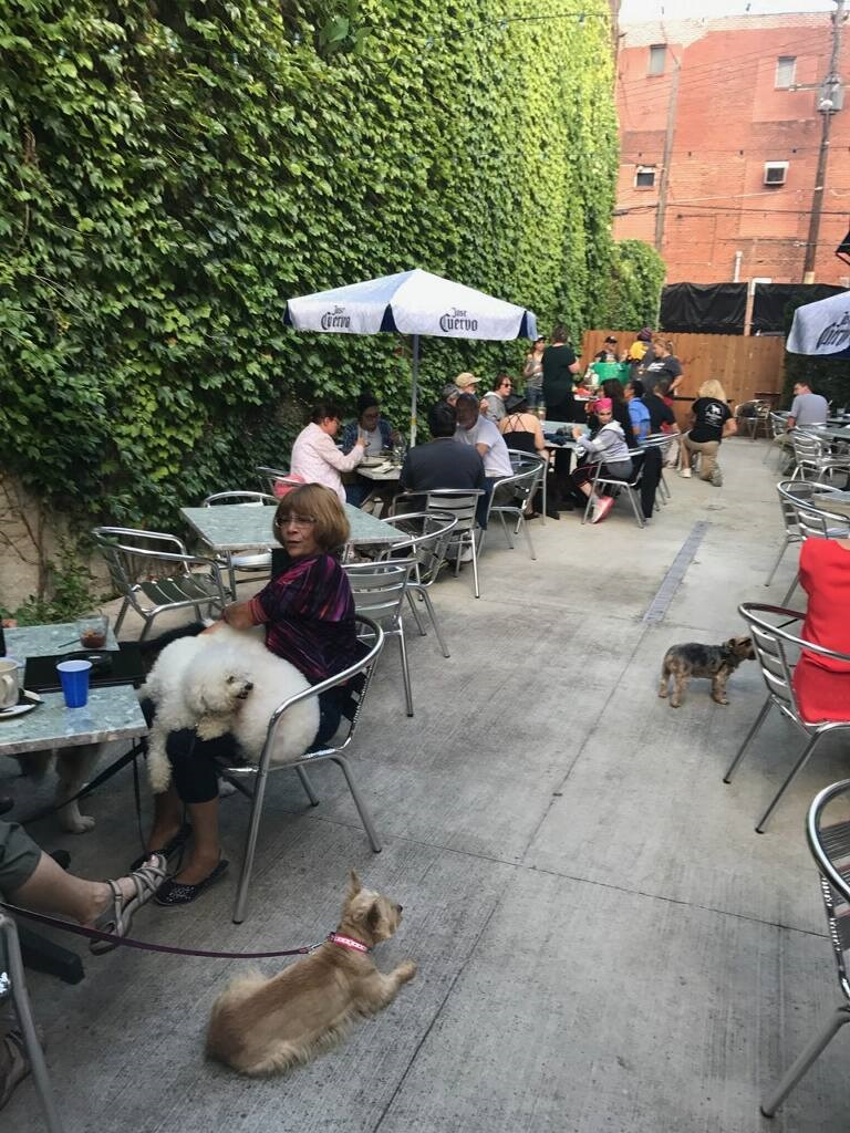 Beer Garden With Room For 100 People And Their Dogs Live Music On Thursday Saay Evenings Will Be Sure To Get Toes Ting Tails Wagging