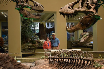 After Dark at Carnegie Museum of Natural History