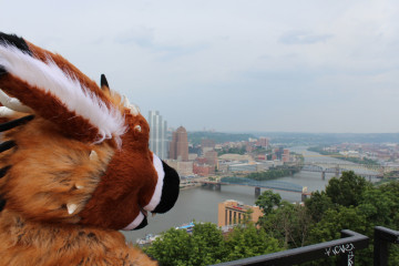 A furry overlooks the city. Photo courtesy Anthrocon
