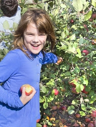 Apple picking is a fun family activity. Photo courtesy Sue Beinlich.