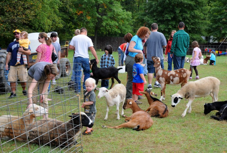 Enjoying the animals at the petting zoo during the Hay Day Celebration. Photo courtesy Allegheny County.