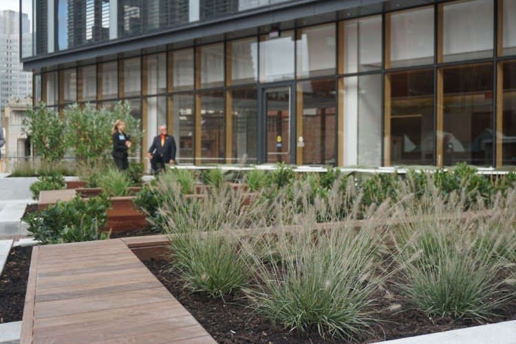 The terrace features natural plantings throughout.
