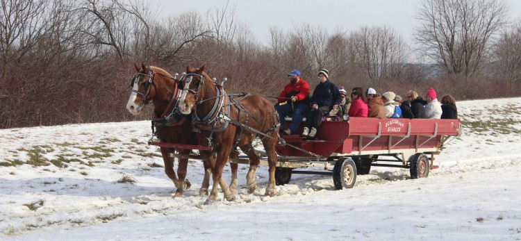 Carriage rides during Winterfest at Moraine State Park. Photo courtesy Teri Whelan.