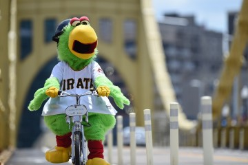 Pittsburgh Pirates Parrot bicycles across the Roberto Clemente Bridge at PNC Park in Pittsburgh, PA on July 22, 2015.  Photo:  Shelley Lipton