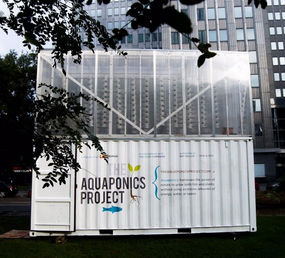 The Aquaponics Project. Photo courtesy PDP.