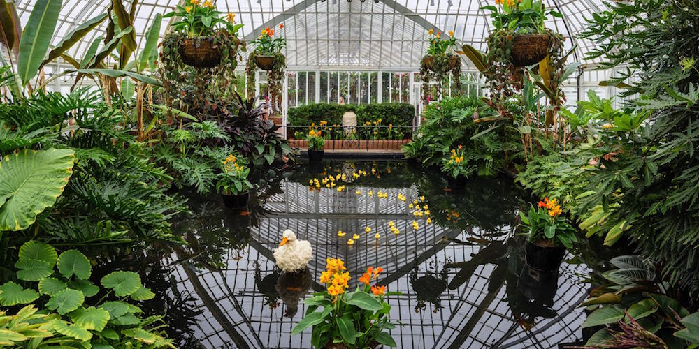 Enchantment Awaits At Phipps 39 Spring Flower Show Nextpittsburgh